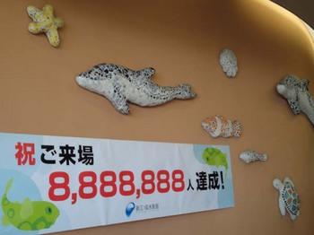 新江ノ島水族館#5.jpg
