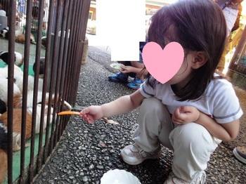 町田リス園0003.JPG