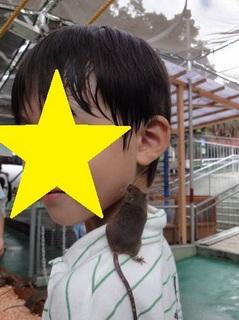 野毛山動物園0002.JPG